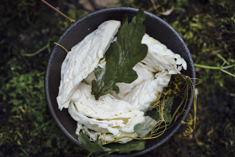 Kopūstai su ąžuolo lapais