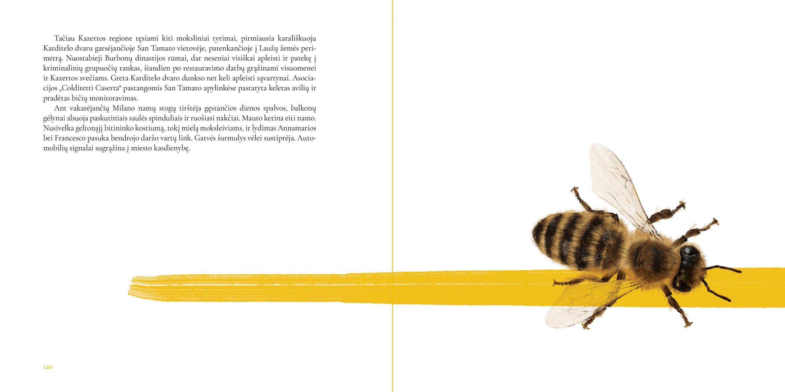 Bičių Revoliucija. Ištrauka 10