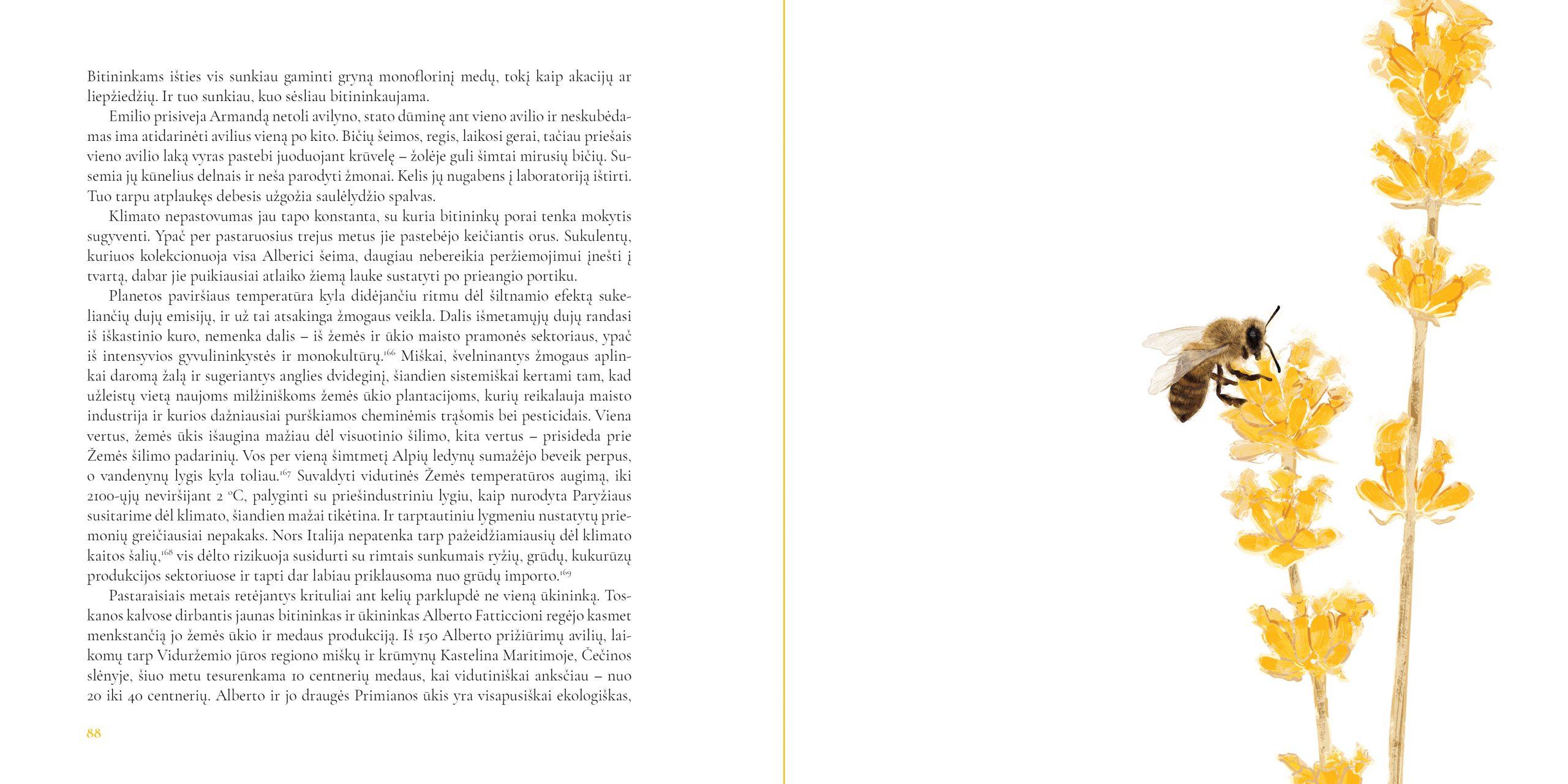 Bičių Revoliucija. Ištrauka 8