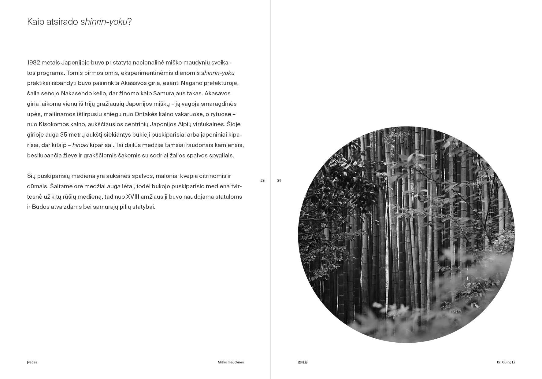 Miško maudynės 4