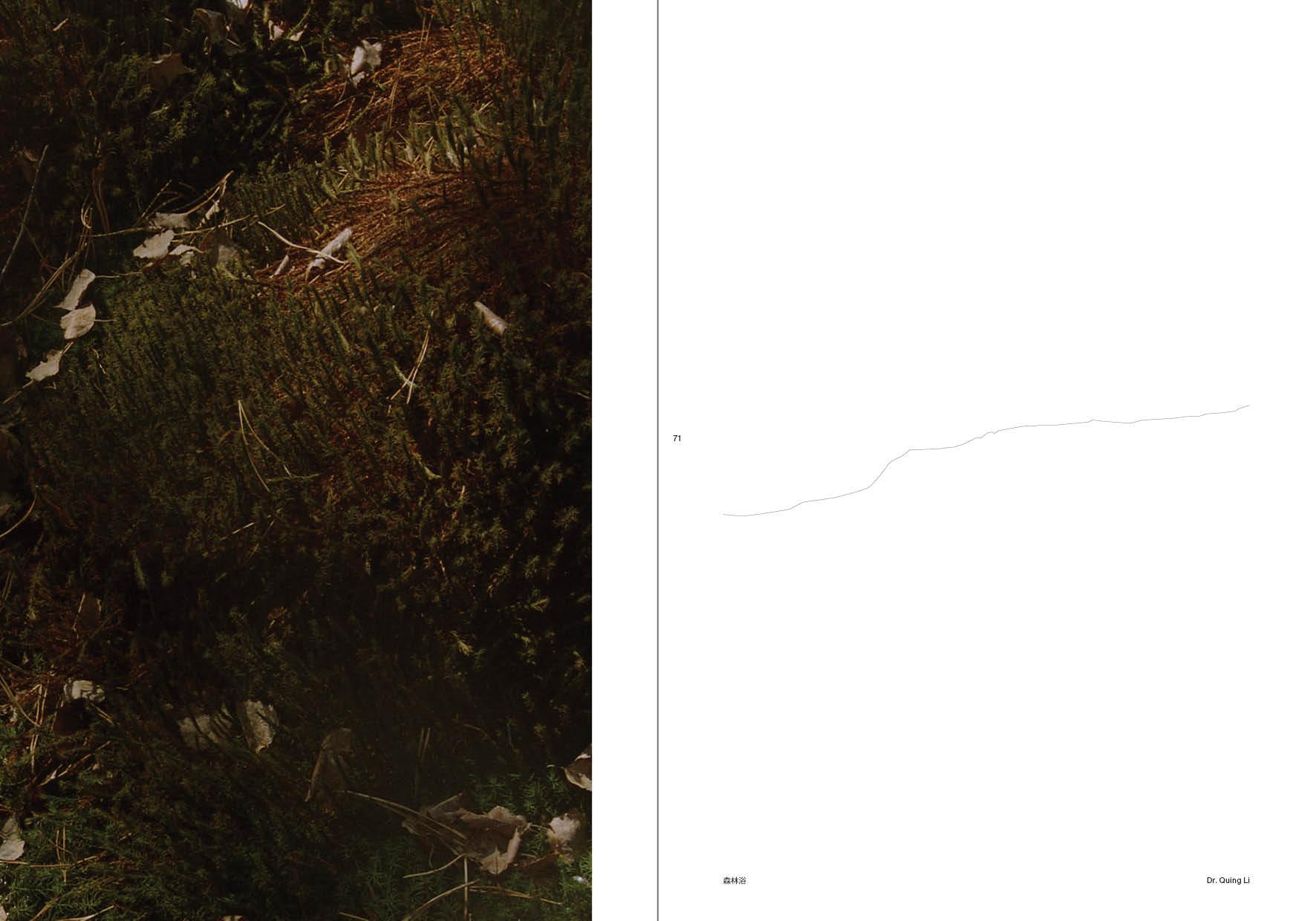Miško maudynės 8